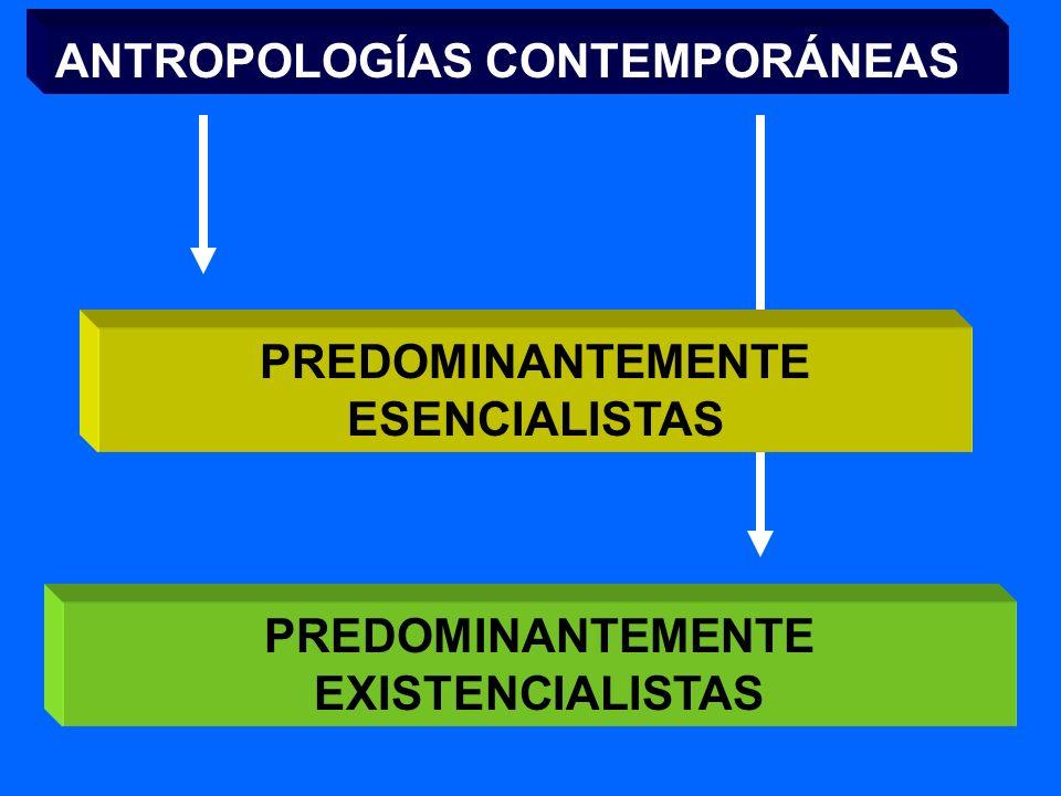 OTROS RASGOS COMUNES ALCANCE POLÍTICO DE LA EDUCACIÓN AMPLIACIÓN DEL CONCEPTO DE EDUCACIÓN INDIVIDUALIZACIÓN/SOCIALIZACIÓN GLOBALIZACIÓN ACTIVIDAD AUT