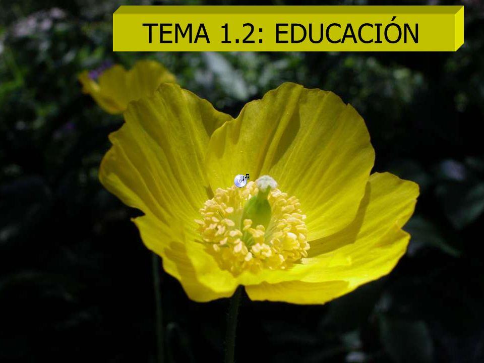 TEMA 1.2: EDUCACIÓN