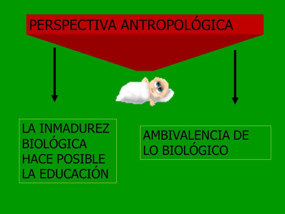 COMPARACIÓN DE SIGNIFICACIONES PRECIENTÍFICO COMÚNETIMOLÓGIC0 RESULTADOPROCESO INFLUENCIA EXTERNA INTERIORIZACIÓN EXTERIORIZACIÓN NOCIÓN SOCIOLÓGICA N