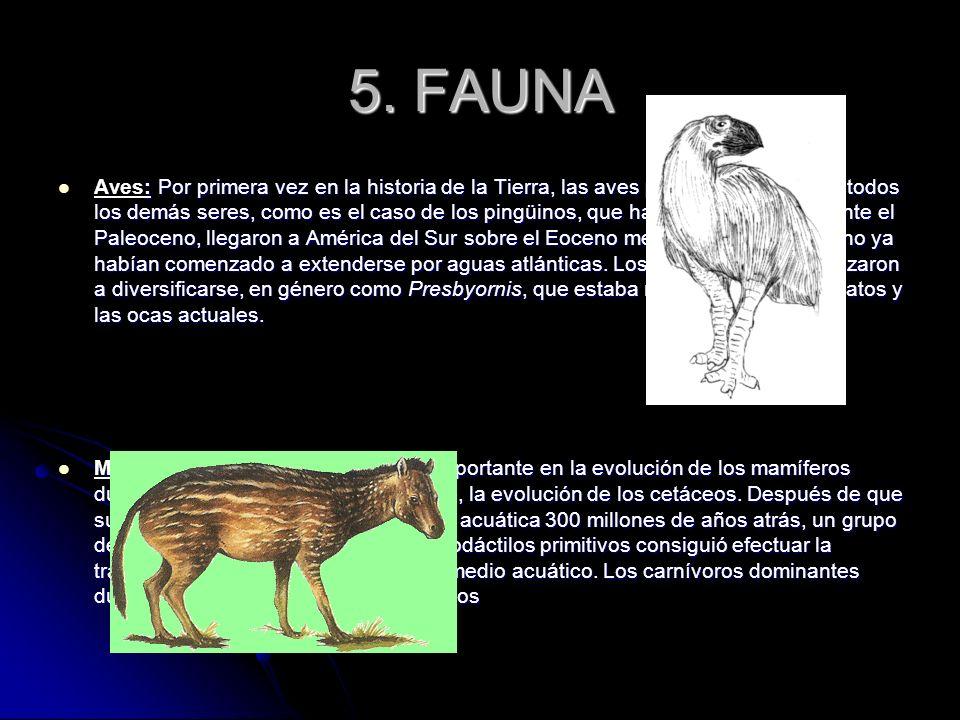 5. FAUNA : Por primera vez en la historia de la Tierra, las aves predominaban sobre todos los demás seres, como es el caso de los pingüinos, que había