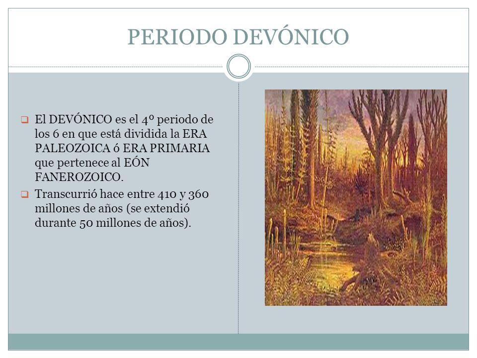PERIODO DEVÓNICO El DEVÓNICO es el 4º periodo de los 6 en que está dividida la ERA PALEOZOICA ó ERA PRIMARIA que pertenece al EÓN FANEROZOICO. Transcu