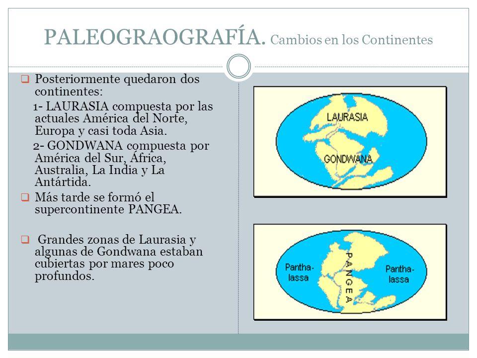 PALEOGRAOGRAFÍA. Cambios en los Continentes Posteriormente quedaron dos continentes: 1- LAURASIA compuesta por las actuales América del Norte, Europa