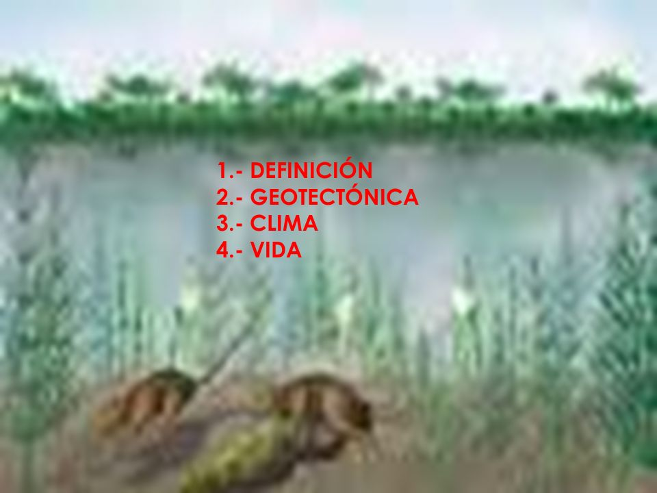 DEFINICIÓN Se aplica a la época geológica que es la primera del periodo paleógeno de la era cenozoica o terciaria (o, según las escuelas, la primera del periodo terciario de la Era Cenozoica), se extiende desde unos 60 millones de años hasta hace unos 46 millones de años.