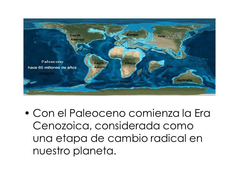 Con el Paleoceno comienza la Era Cenozoica, considerada como una etapa de cambio radical en nuestro planeta.