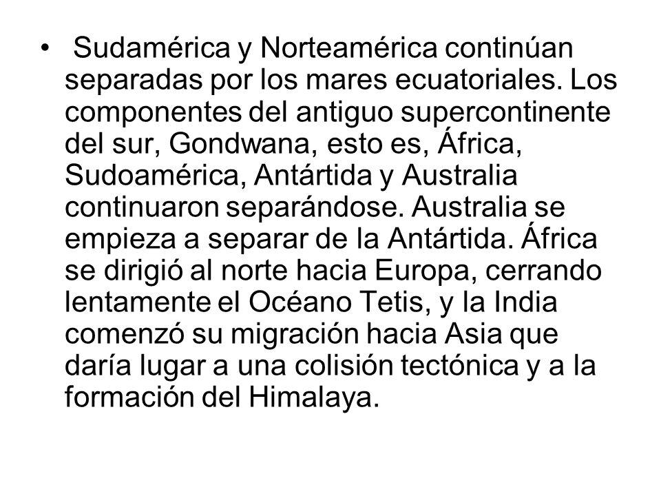 Sudamérica y Norteamérica continúan separadas por los mares ecuatoriales. Los componentes del antiguo supercontinente del sur, Gondwana, esto es, Áfri