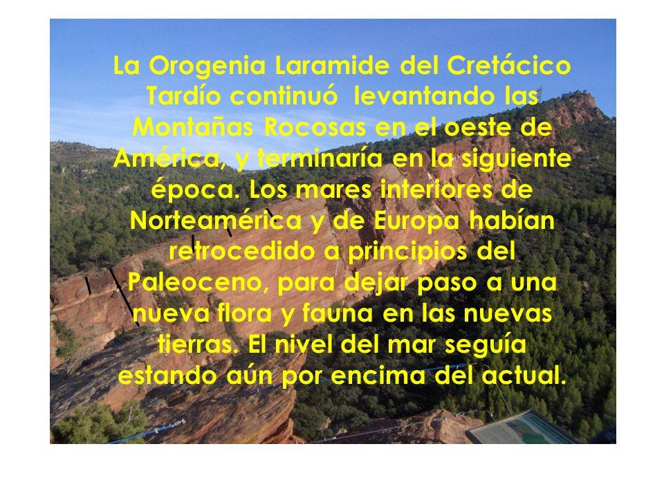 La Orogenia Laramide del Cretácico Tardío continuó levantando las Montañas Rocosas en el oeste de América, y terminaría en la siguiente época. Los mar