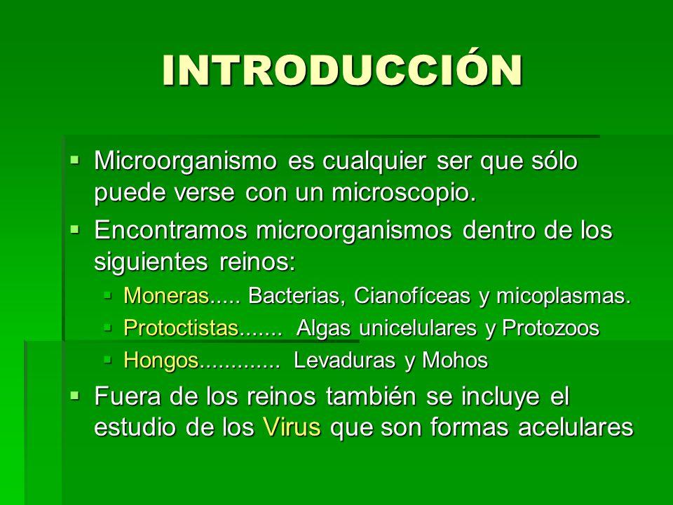 INTRODUCCIÓN Microorganismo es cualquier ser que sólo puede verse con un microscopio. Microorganismo es cualquier ser que sólo puede verse con un micr