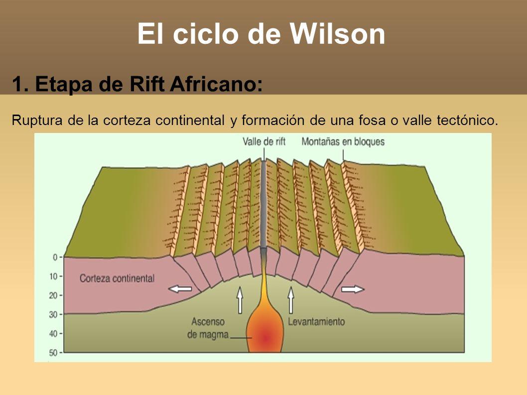 El ciclo de Wilson 1. Etapa de Rift Africano: Ruptura de la corteza continental y formación de una fosa o valle tectónico.