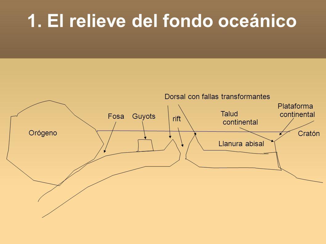 1. El relieve del fondo oceánico Orógeno Cratón Dorsal con fallas transformantes rift Llanura abisal FosaGuyots Talud continental Plataforma continent