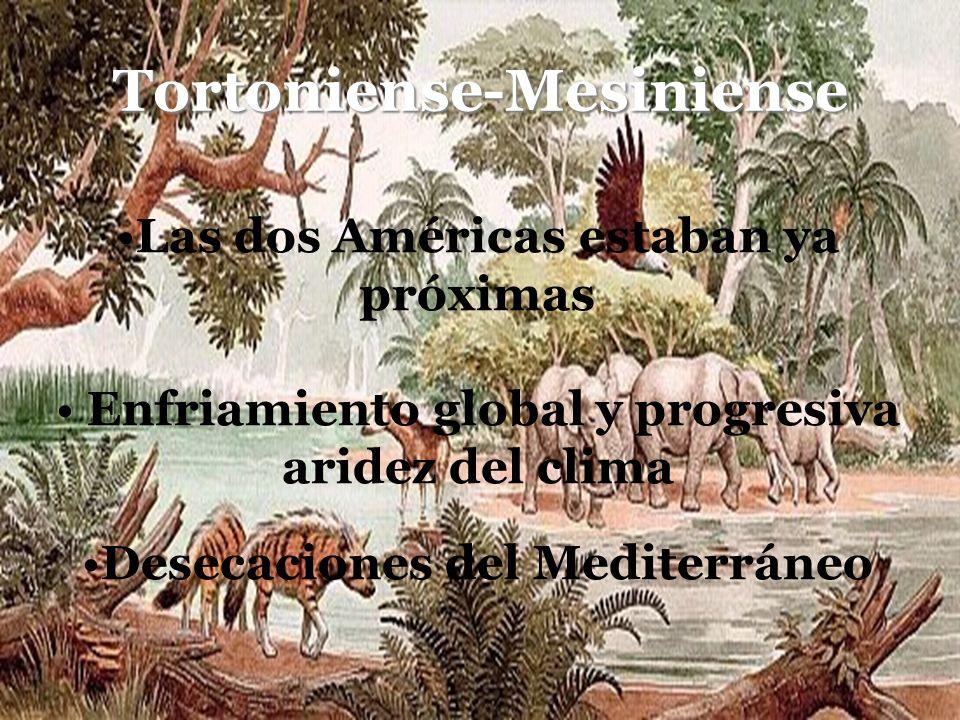 Tortoniense-Mesiniense Las dos Américas estaban ya próximas Enfriamiento global y progresiva aridez del clima Desecaciones del Mediterráneo