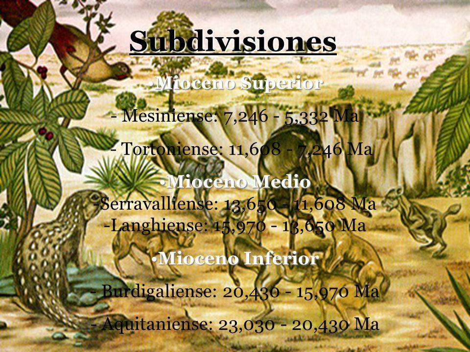Mioceno SuperiorMioceno Superior - Mesiniense: 7,246 - 5,332 Ma - Tortoniense: 11,608 - 7,246 Ma Mioceno MedioMioceno Medio -Serravalliense: 13,650 -
