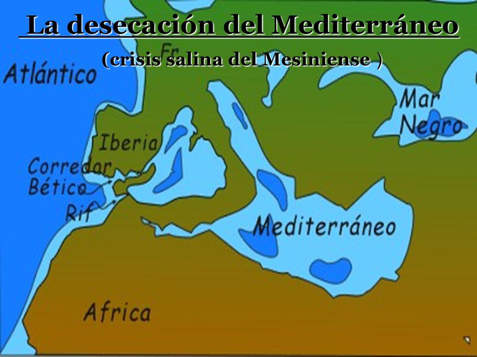 S=Cuenca de Sorbas, Almería B=Corredor bético R=Corredor del Rift.