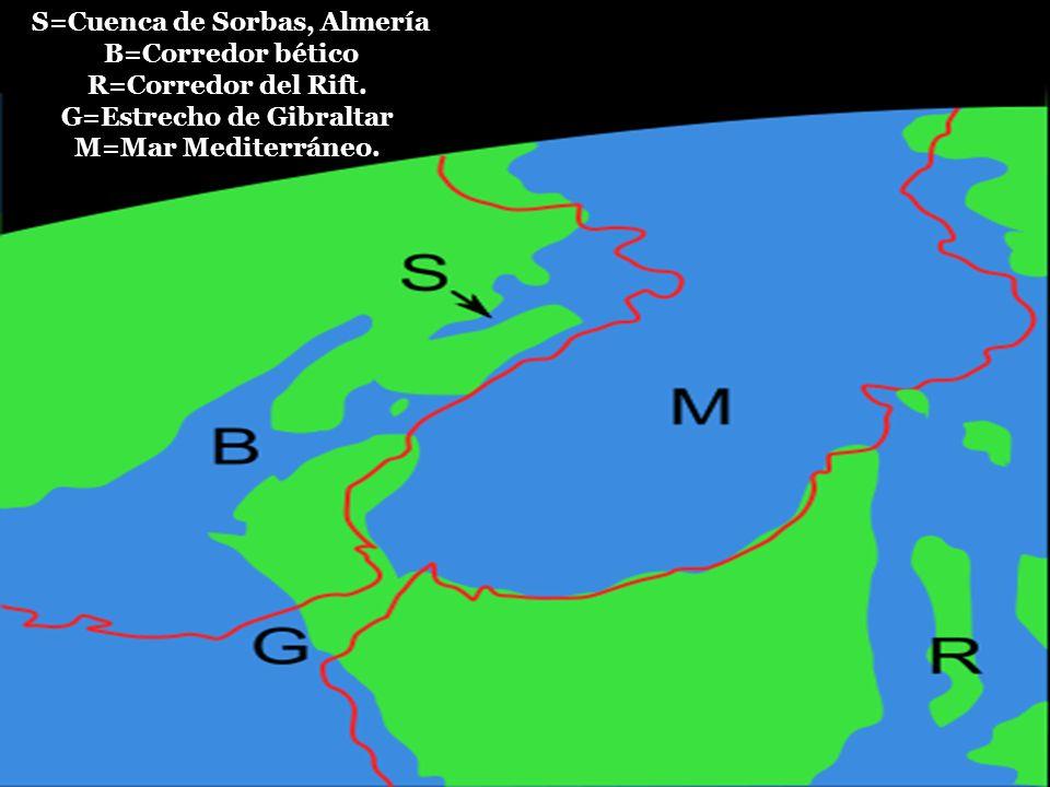 S=Cuenca de Sorbas, Almería B=Corredor bético R=Corredor del Rift. G=Estrecho de Gibraltar M=Mar Mediterráneo.