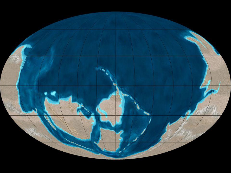 Situación de los geográfica En el Cámbrico la llamada Pangea empieza a fragmentarse. Surgen varias masas continentales separadas por nuevas cuencas oc