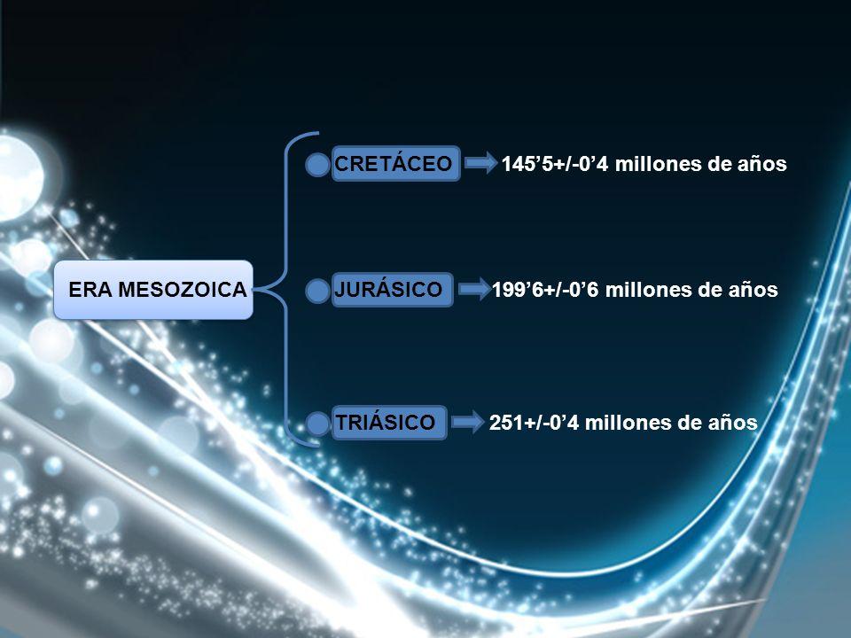 CRETÁCEO 1455+/-04 millones de años JURÁSICO 1996+/-06 millones de años TRIÁSICO 251+/-04 millones de años ERA MESOZOICA
