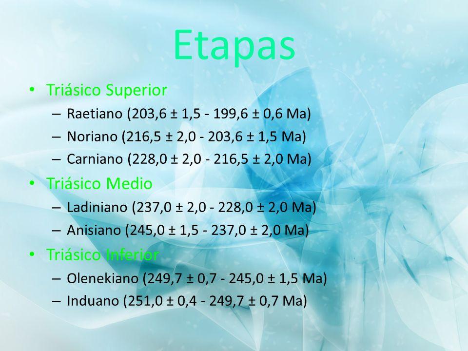 Etapas Triásico Superior – Raetiano (203,6 ± 1,5 - 199,6 ± 0,6 Ma) – Noriano (216,5 ± 2,0 - 203,6 ± 1,5 Ma) – Carniano (228,0 ± 2,0 - 216,5 ± 2,0 Ma)