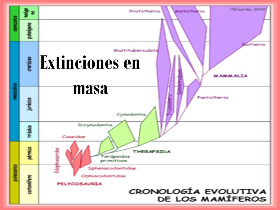 Extinciones en masa