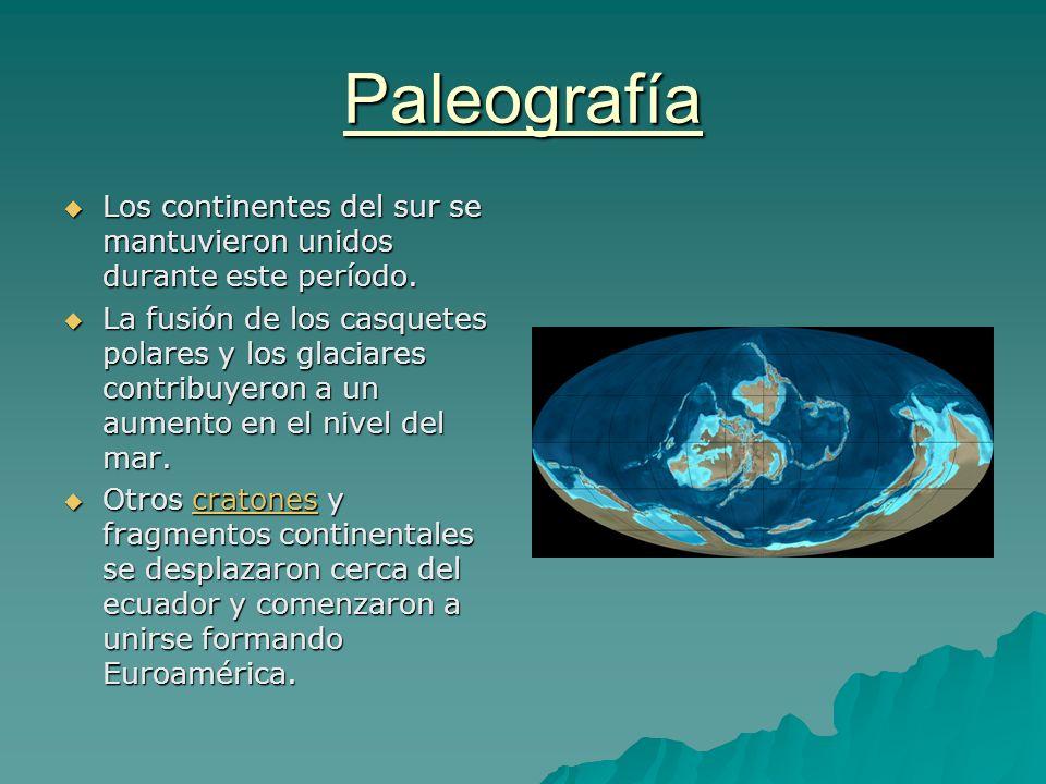 Paleografía Los continentes del sur se mantuvieron unidos durante este período. Los continentes del sur se mantuvieron unidos durante este período. La