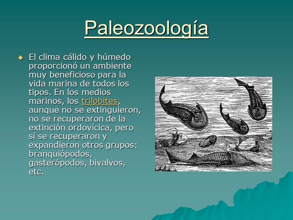 Paleozoología El clima cálido y húmedo proporcionó un ambiente muy beneficioso para la vida marina de todos los tipos. En los medios marinos, los tril