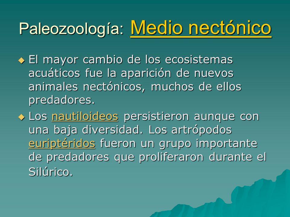Paleozoología: Medio nectónico El mayor cambio de los ecosistemas acuáticos fue la aparición de nuevos animales nectónicos, muchos de ellos predadores