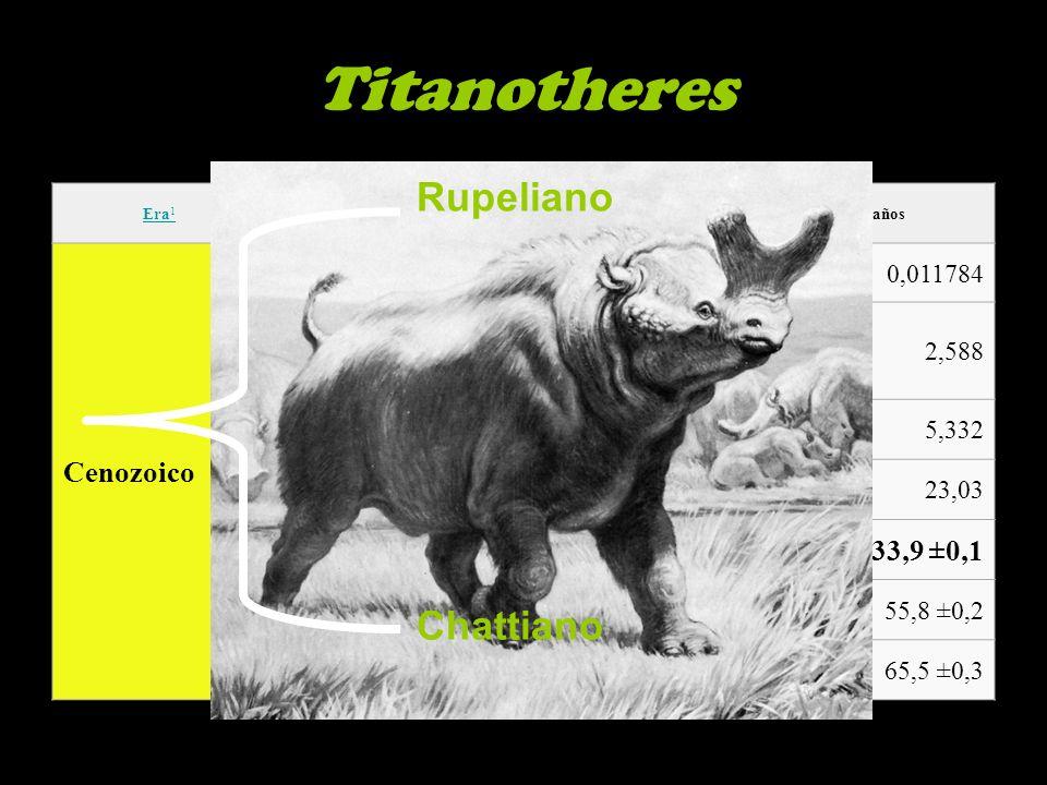 Era 1 PeríodoÉpocaMillones años Cenozoico Cuaternario Holoceno0,011784 Pleistoceno2,588 Neógeno Plioceno5,332 Mioceno23,03 Paleógeno Oligoceno33,9 ±0,