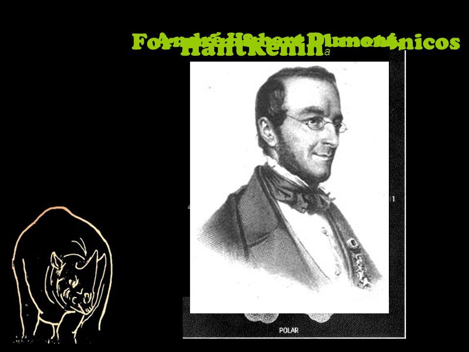 Foraminíferos Planctónicos Hantkenin a André Hubert Dumont,