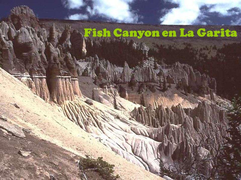 Rupeliano Chattiano foraminíferos planctónicos Chiloguembelina Fish Canyon en La Garita