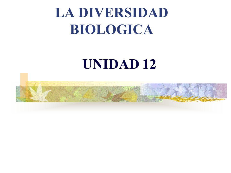 LA DIVERSIDAD BIOLOGICA UNIDAD 12