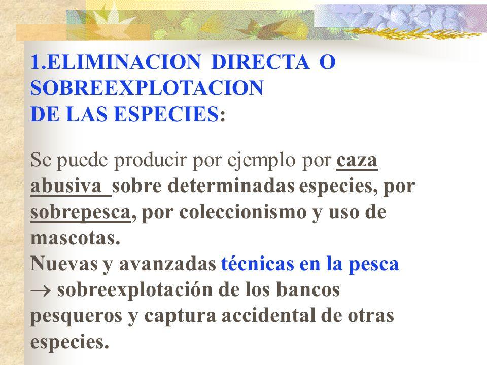 CAUSAS DE LA PÉRDIDA DE BIODIVERSIDAD 1. Eliminación directa o sobreexplotación 2. Contaminación, Destrucción y fragmentación de los hábitats 3. Intro