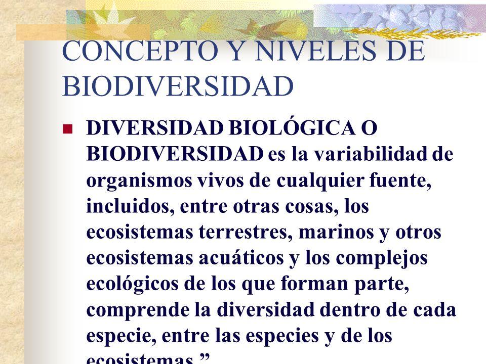 CONCEPTO Y NIVELES DE BIODIVERSIDAD DIVERSIDAD BIOLÓGICA O BIODIVERSIDAD es la variabilidad de organismos vivos de cualquier fuente, incluidos, entre otras cosas, los ecosistemas terrestres, marinos y otros ecosistemas acuáticos y los complejos ecológicos de los que forman parte, comprende la diversidad dentro de cada especie, entre las especies y de los ecosistemas.