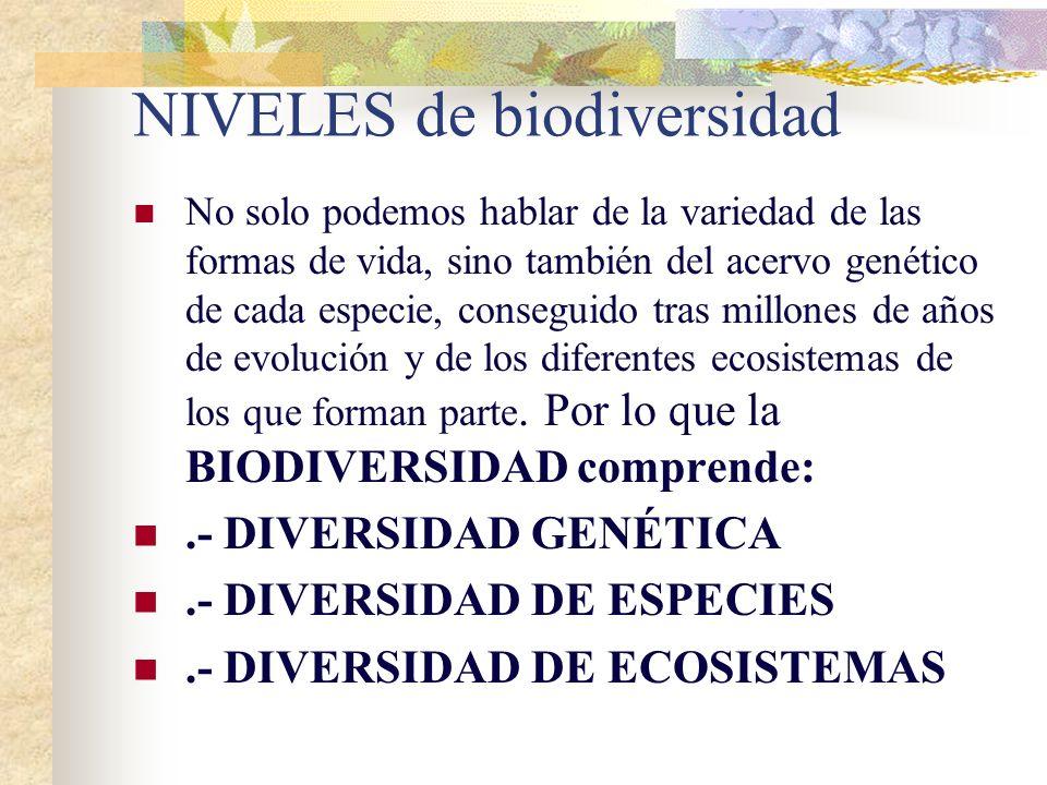 NIVELES de biodiversidad No solo podemos hablar de la variedad de las formas de vida, sino también del acervo genético de cada especie, conseguido tras millones de años de evolución y de los diferentes ecosistemas de los que forman parte.