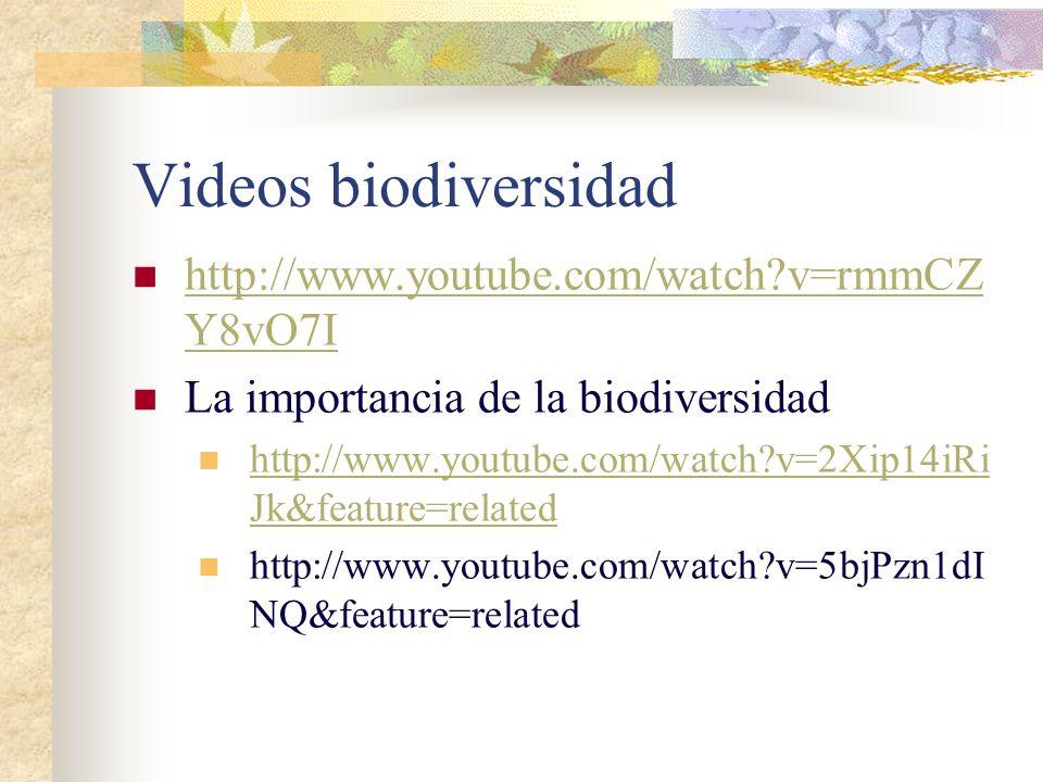4.- VALOR RECREATIVO Y TURÍSTICO: Los animales y plantas salvajes son fuente de admiración para muchos y una buena fuente de ingresos para las regione