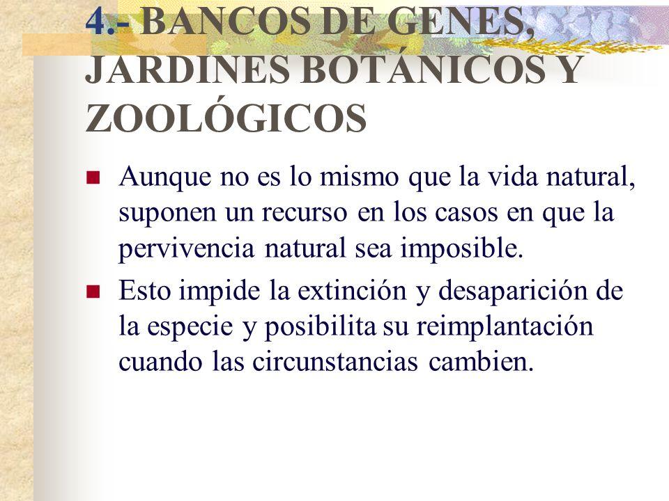 3.- PROTECCIÓN DE ECOSISTEMAS Establecer suficientes RESERVAS DE LA BIOSFERA, PARQUES NACIONALES, ESPACIOS PROTEGIDOS,... Algunos de estos espacios so
