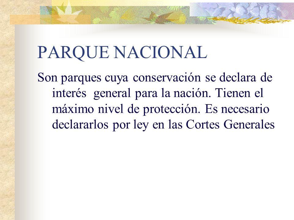 FIGURAS DE ESPACIOS PROTEGIDOS EN ESPAÑA Contamos con 13 Parques Nacionales ( Doñana, Sierra Nevada, Teide, Garajonay, Timanfaya, Caldera de Taburient