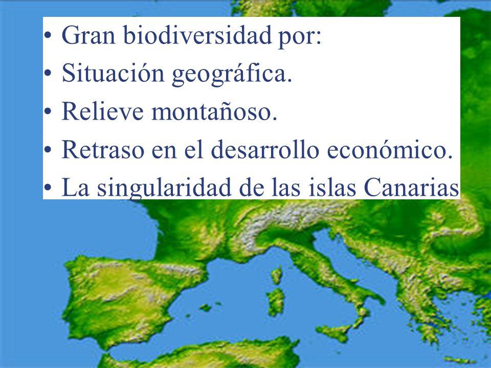 BIODIVERSIDAD EN ESPAÑA El 64% de la diversidad europea. El 79% de los mamíferos europeos. El 74% de las aves europeas. Numerosos endemismos.