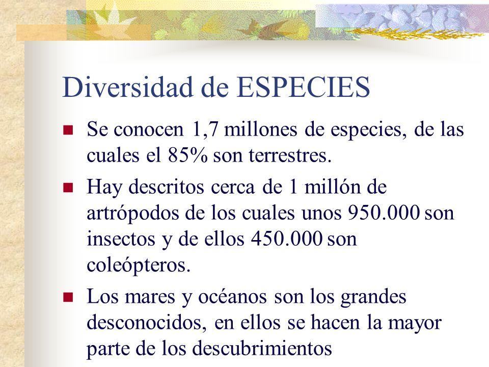 Diversidad de ESPECIES Se conocen 1,7 millones de especies, de las cuales el 85% son terrestres.