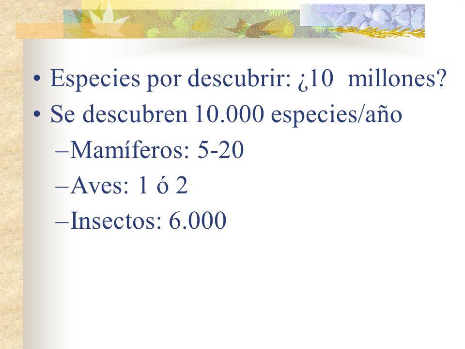 Plantas no vasculares: 150.000 Plantas vasculares: 250.000 Invertebrados: 1.300.000 Peces: 21.000 Anfibios: 3.100 Reptiles: 5.100 Aves: 8.700 Mamífero