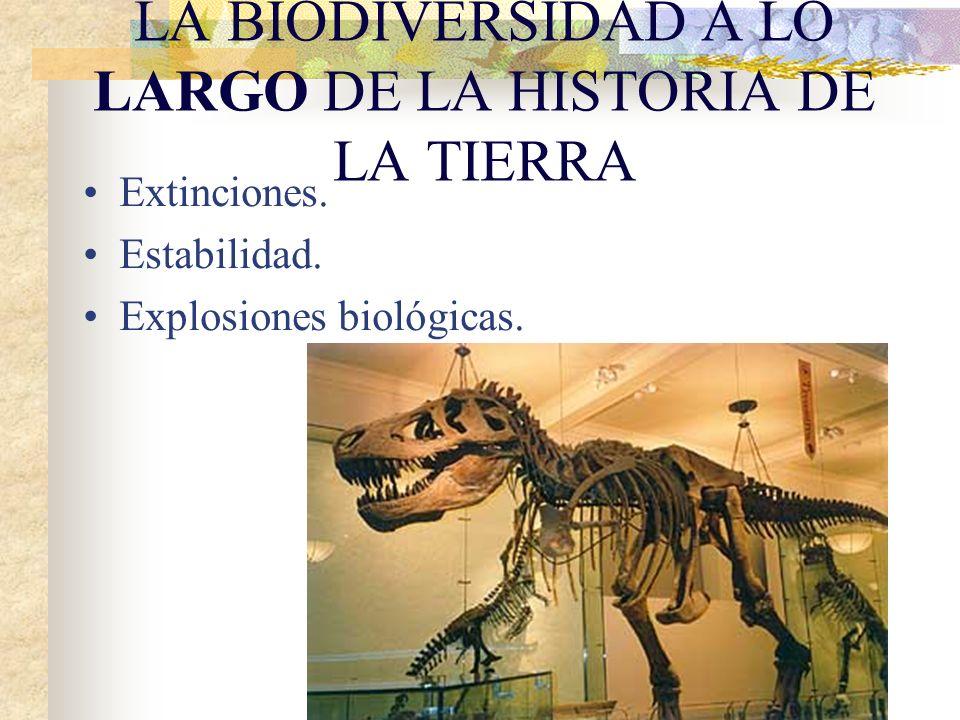 Extinciones.Estabilidad. Explosiones biológicas.