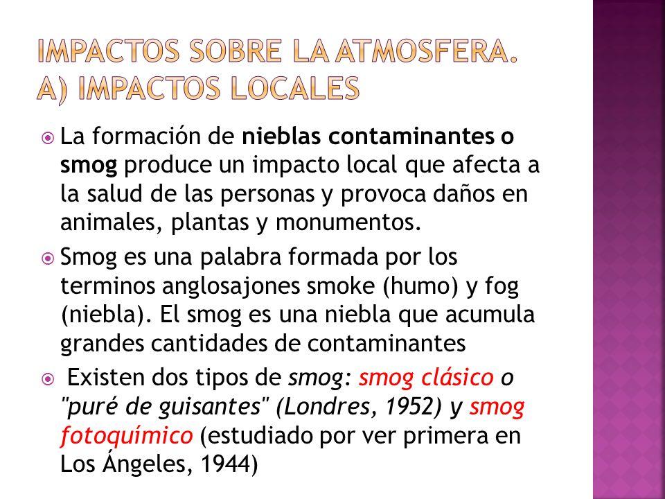 La formación de nieblas contaminantes o smog produce un impacto local que afecta a la salud de las personas y provoca daños en animales, plantas y mon