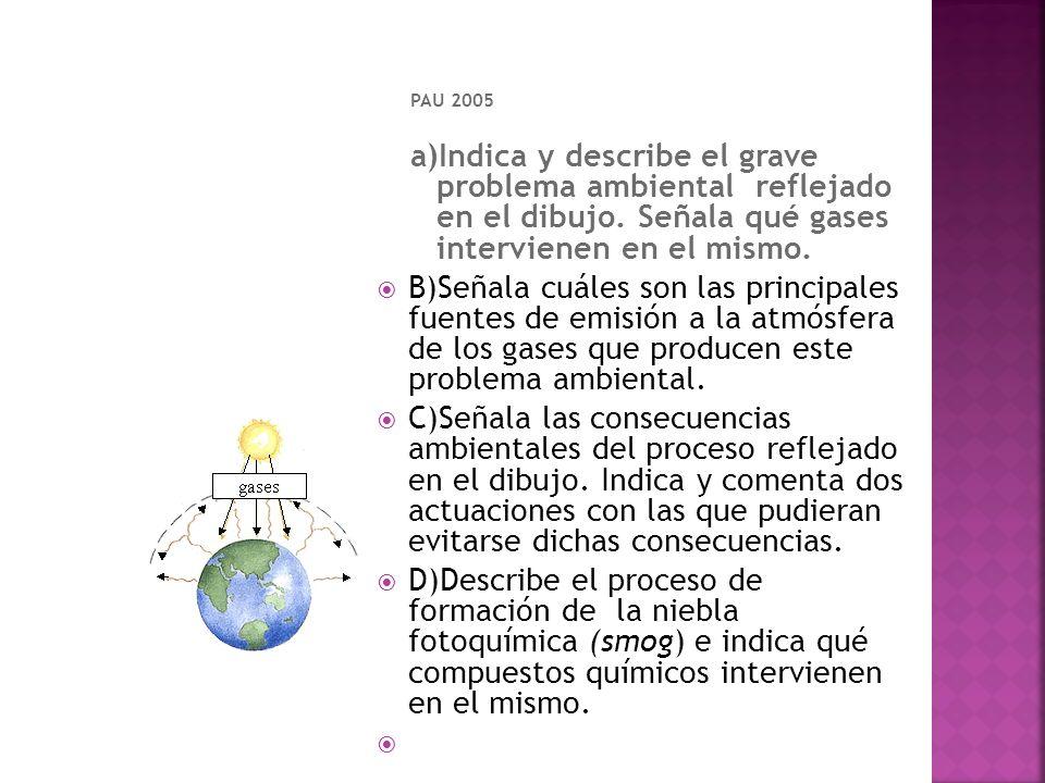 PAU 2005 a)Indica y describe el grave problema ambiental reflejado en el dibujo. Señala qué gases intervienen en el mismo. B)Señala cuáles son las pri