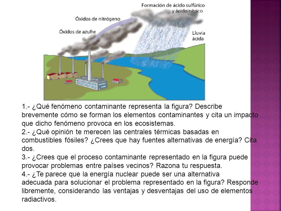 1.- ¿Qué fenómeno contaminante representa la figura? Describe brevemente cómo se forman los elementos contaminantes y cita un impacto que dicho fenóme