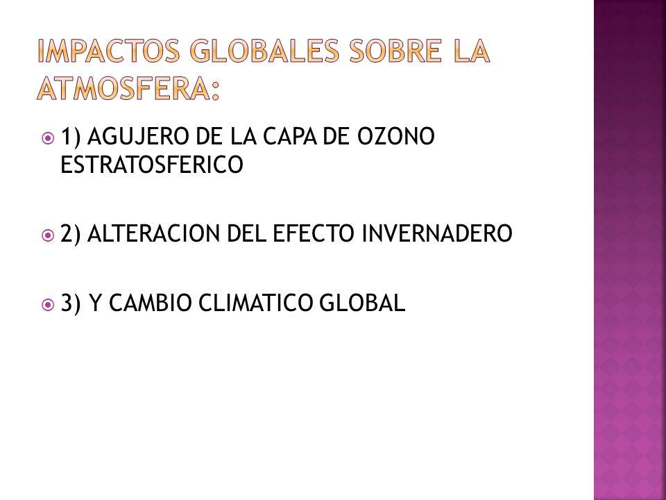 1) AGUJERO DE LA CAPA DE OZONO ESTRATOSFERICO 2) ALTERACION DEL EFECTO INVERNADERO 3) Y CAMBIO CLIMATICO GLOBAL