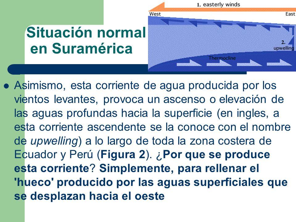 Situación normal en Suramérica Asimismo, esta corriente de agua producida por los vientos levantes, provoca un ascenso o elevación de las aguas profun