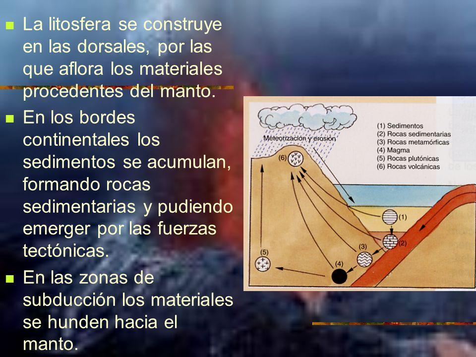 La litosfera se construye en las dorsales, por las que aflora los materiales procedentes del manto. En los bordes continentales los sedimentos se acum