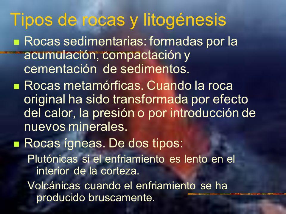 Tipos de rocas y litogénesis Rocas sedimentarias: formadas por la acumulación, compactación y cementación de sedimentos. Rocas metamórficas. Cuando la
