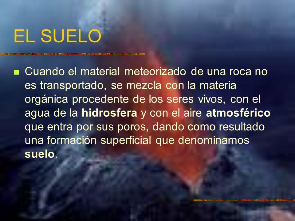 EL SUELO Cuando el material meteorizado de una roca no es transportado, se mezcla con la materia orgánica procedente de los seres vivos, con el agua d