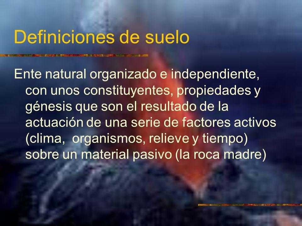 Definiciones de suelo Ente natural organizado e independiente, con unos constituyentes, propiedades y génesis que son el resultado de la actuación de