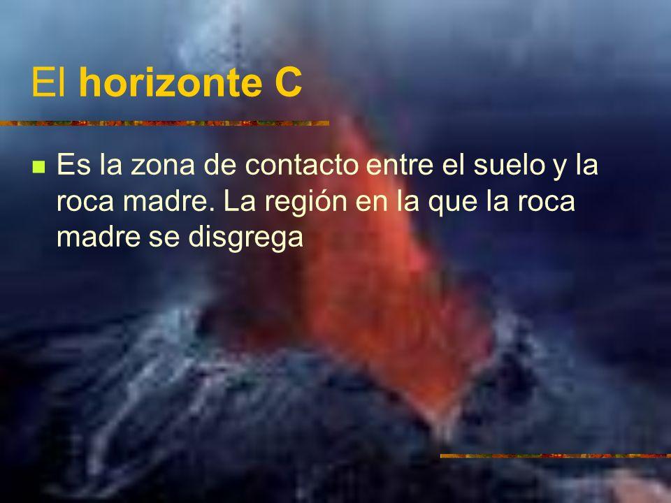 El horizonte C Es la zona de contacto entre el suelo y la roca madre. La región en la que la roca madre se disgrega