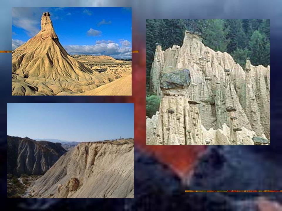 Horizonte A Formado en la superficie o debajo de un horizonte O, con mayor % materia orgánica (transformada) que los horizontes situados debajo.