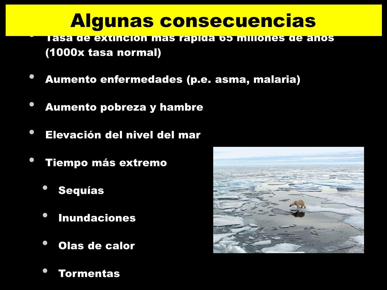 Tasa de extinción más rápida 65 millones de años (1000x tasa normal) Aumento enfermedades (p.e. asma, malaria) Aumento pobreza y hambre Elevación del